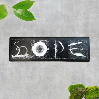 9-HOPE BW-S