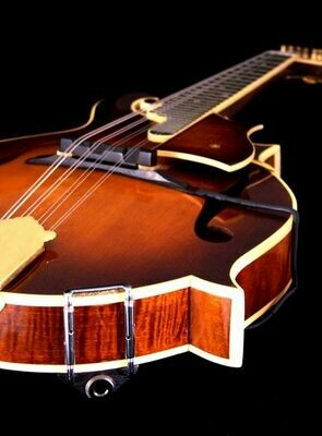 Realist Copperhead Mandolin