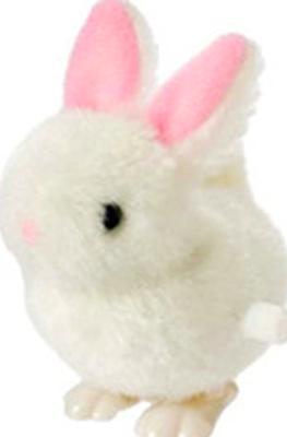 Fuzzy Wind-Ups - Bunny