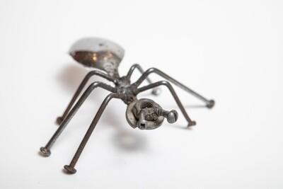 Miles Reid Ant(s) 2