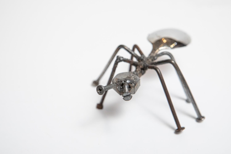Miles Reid Ant(s) 1