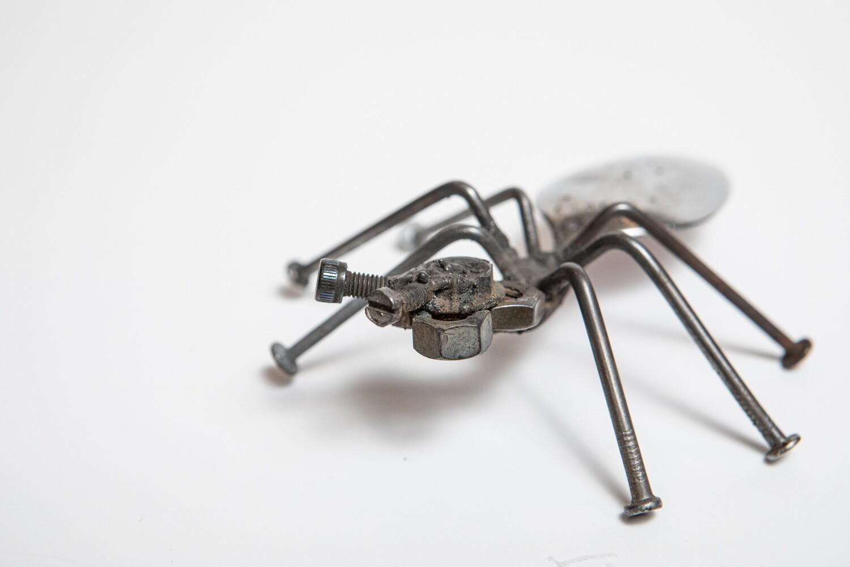 Miles Reid Ant(s) 3