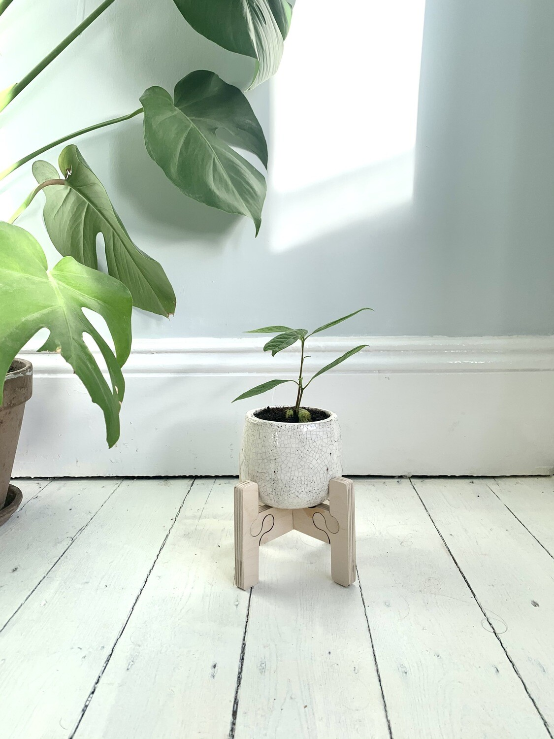 Frø Small/ short Plant Pot Stand by Pretty Ply