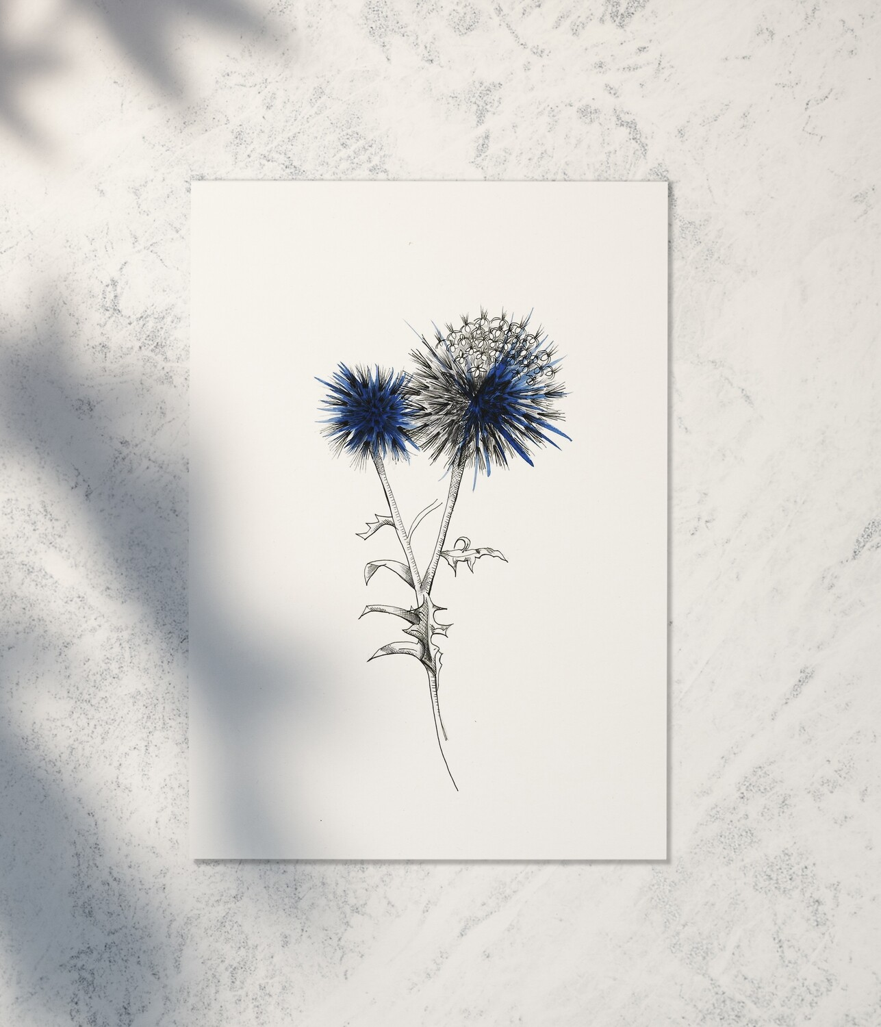 Thistle Art Print by Brushed Ink