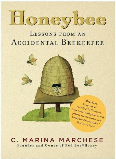 Honeybee Lessons From an Accidental Beekeeper