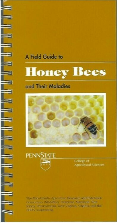 A Field Guide to Honey Bees