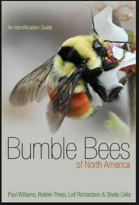Bumble Bees of North America