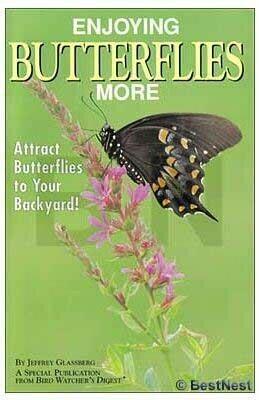 Enjoying Butterflies More