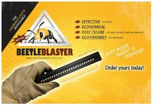 Beetle Blaster Trap-DC-685