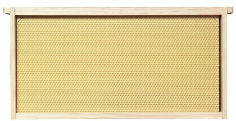Frames-Assembled Yellow Plastic Foundation