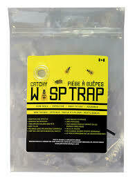 Wasp Trap - Catchy