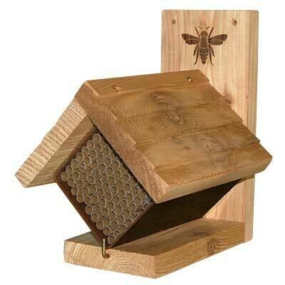 Western Cedar Mason Bee House