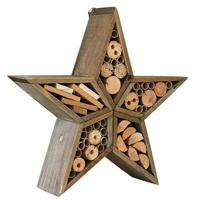 Star Insect House