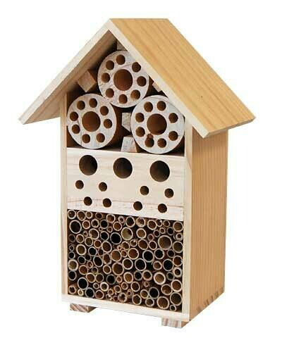 Songbird Bee and Insect Hotel