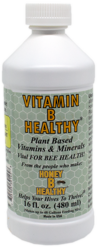 Vitamin B Healthy
