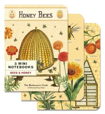 Cavallini Notebooks