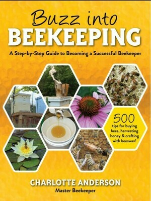 Buzz into Beekeeping