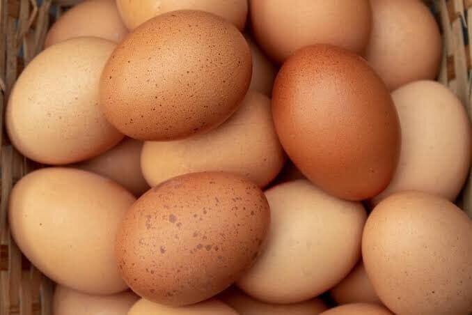 Eggs - Free Range Local (Jumbo) - Per Dozen
