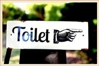 Enamel Toilet Plaque