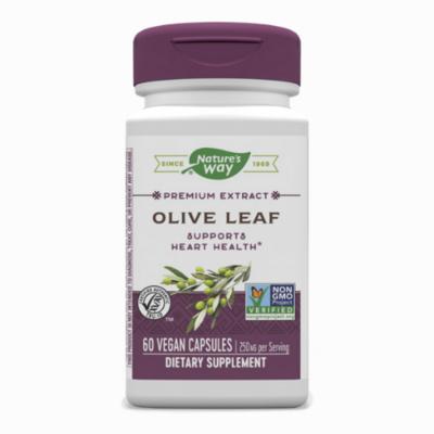 Olive Leaf Premium Extract