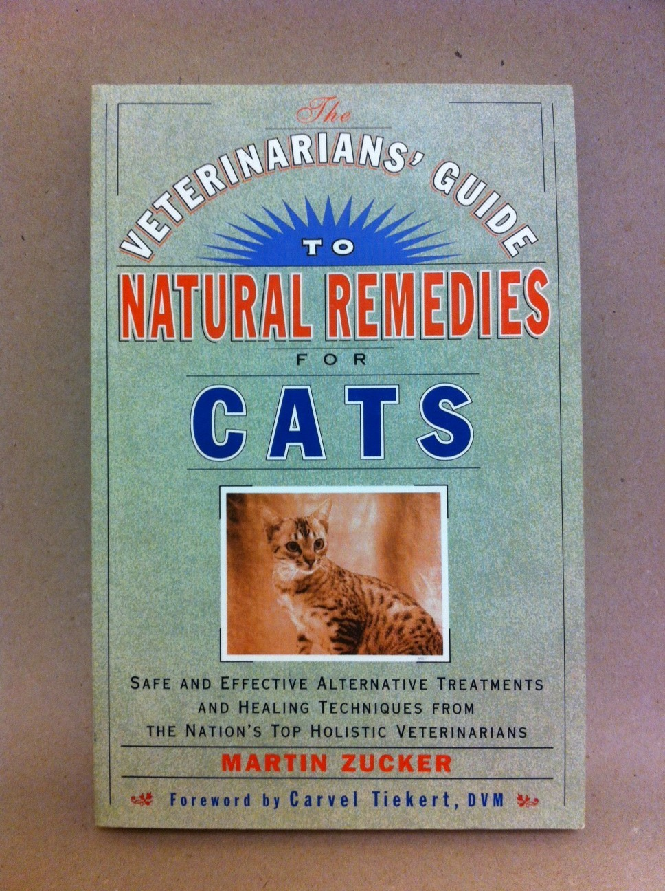 A Veterinarian's Guide to Natural Remedies for Cats