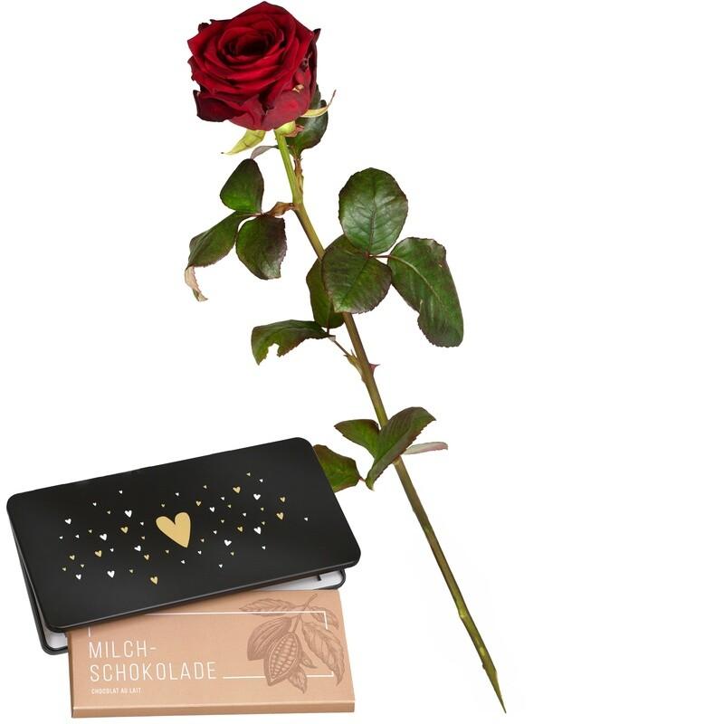 1 rote Rose mit Schokoladentafel Heart