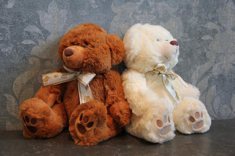 Teddybär (braun oder weiss)