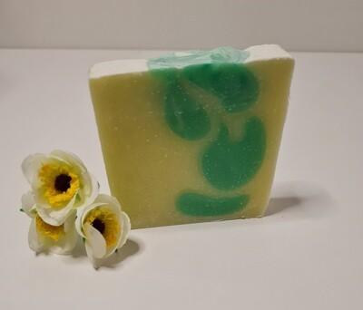 Aloe Vera Seife, für trockene empfindliche Haut, vegan, mit Kakaobutter