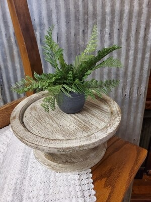 Potted Fern 11in