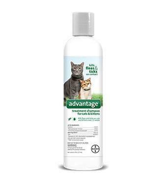 ADVANTAGE CAT SHAMPOO 8OZ
