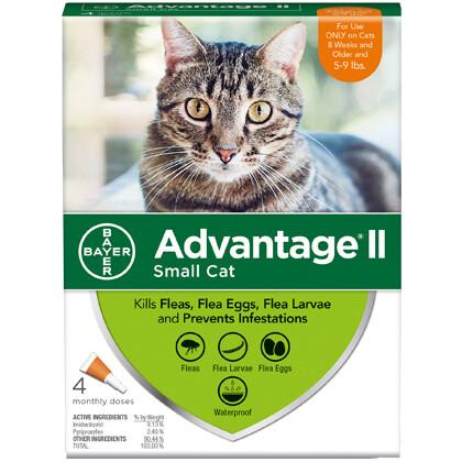 ADVANTAGE CAT SM 5-9# 4pk