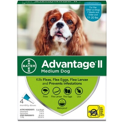 ADVANTAGE DOG MD 11-20# 4pk