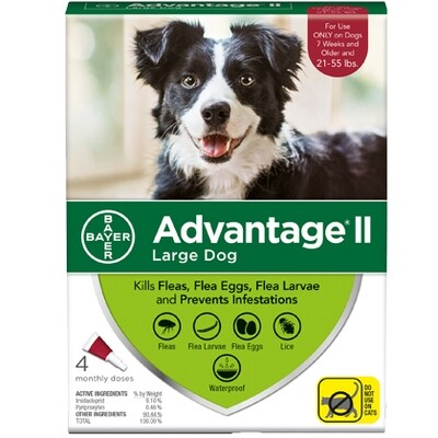 ADVANTAGE DOG LG 21-55# 4pk