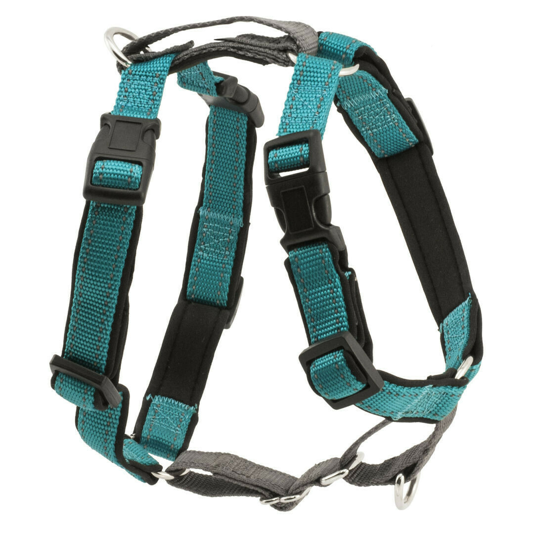 3IN1 HARNESS TEAL SM
