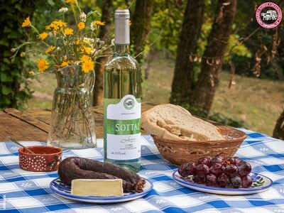 QUINTA DO SANGUINHAL - PICNIC