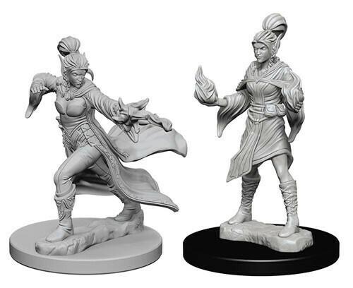 Elf Female Sorcerer 72606
