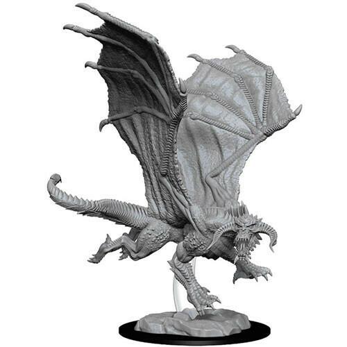 Young Black Dragon 73682