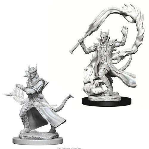 Tiefling Male Sorceror 73201