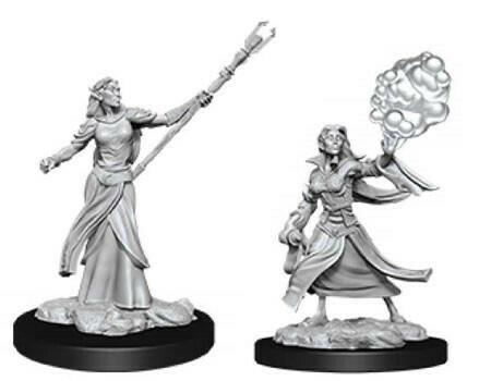 Elf Female Sorcerer 90054