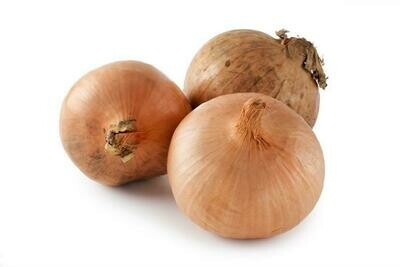 Large Onions
