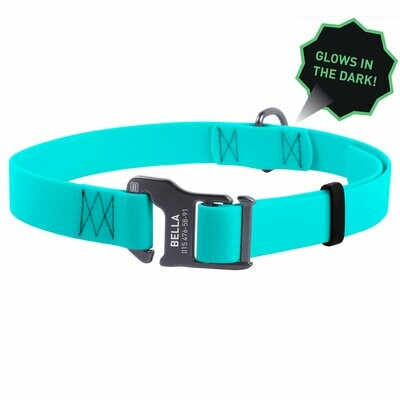 WAUDOG Glow In The Dark Collar