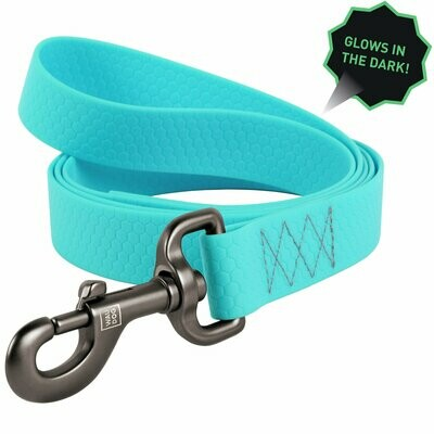 WAUDOG Glow In The Dark Leash