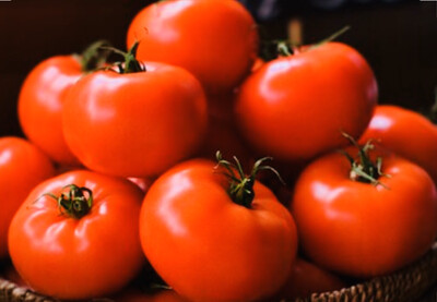 Large Red Tomato 5/6 Each