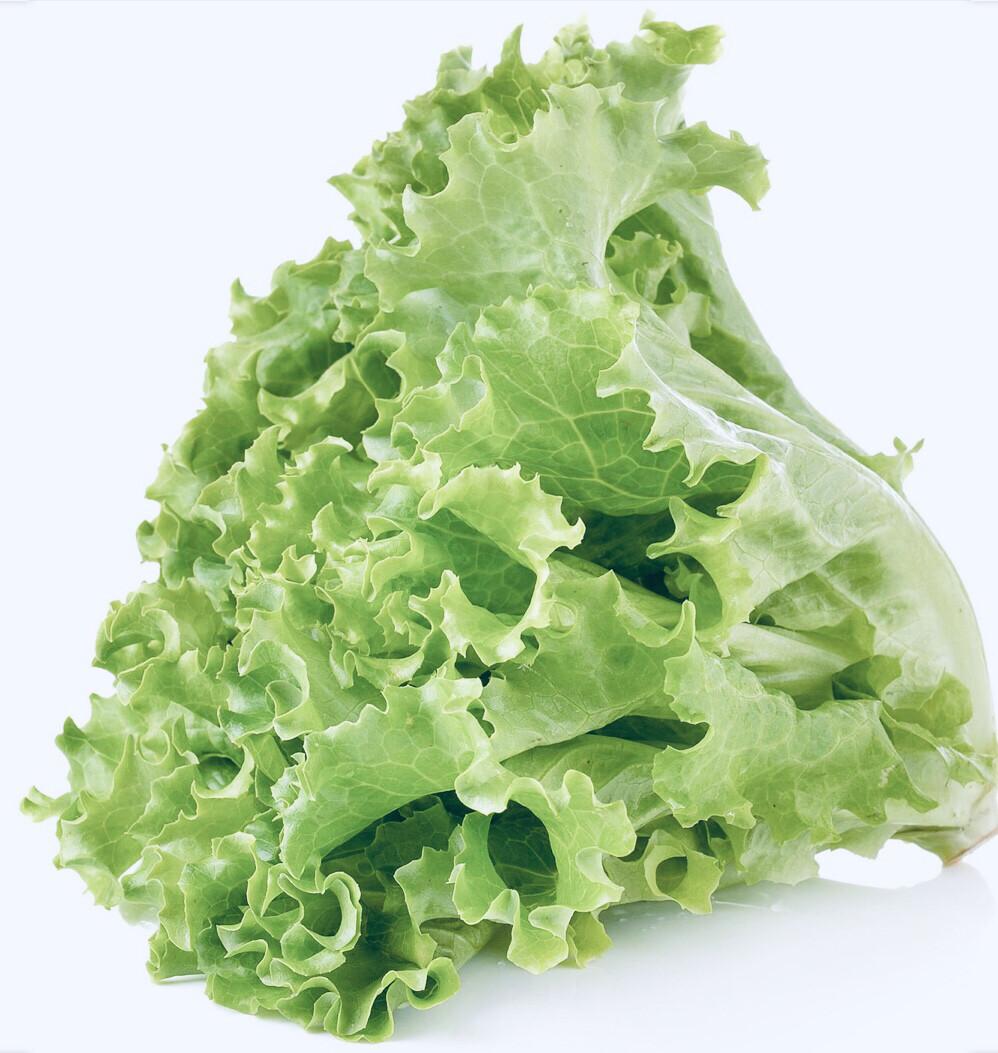 Lettuce Green Leaf  Org. Each