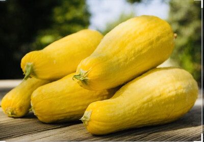 Yellow Squash Medium Straightneck Each