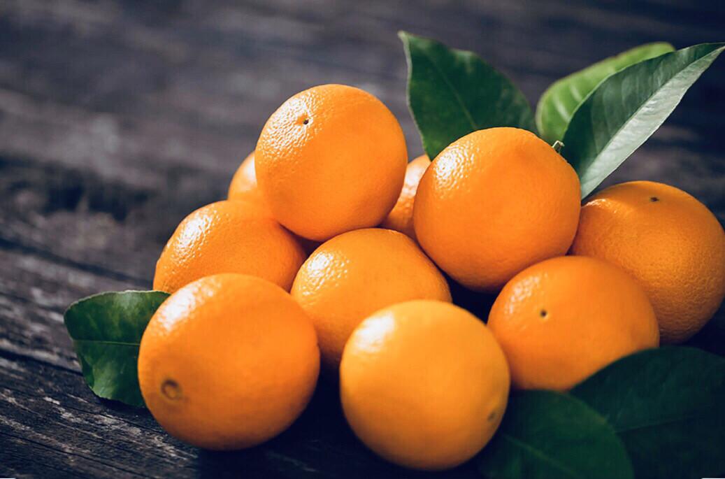 Sweat Orange