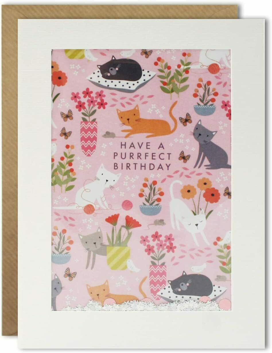 "CARTE DE VŒUX ""HAVE A PURRFECT BIRTHDAY"""