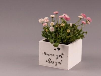 """Blumenkistchen """"Mama gut - alles gut"""""""