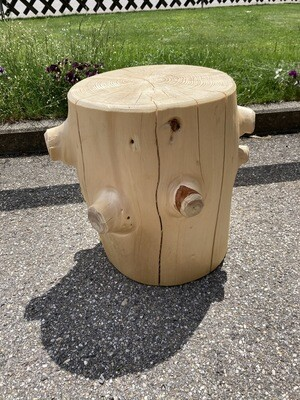 Holzstamm H5