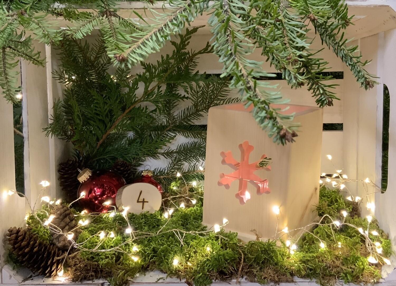 4. Dezember Zirben-Licht